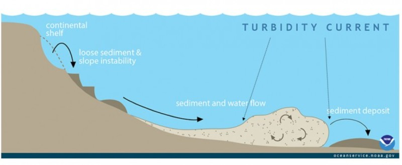 Turbidity Current and Landslides
